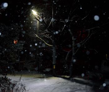 201611.24.未明の雪