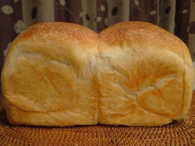 自家製酵母 食パン カメリヤ