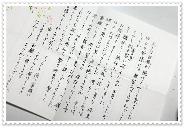 aIMG_2639.JPG