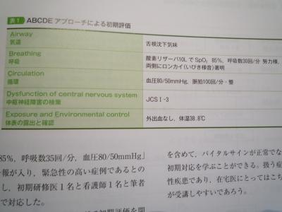 P1060731.JPG
