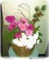 2015/12/31、いっぱい咲いた菊たちで お正月籠盛りアレンジメント