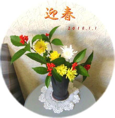 迎春 千両/菊(黄2種、白)