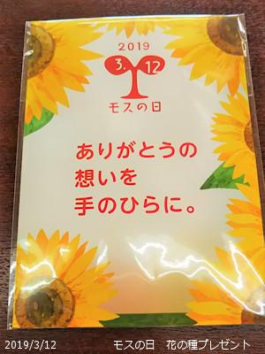 2019/3/12、モスの日 花の種プレゼント ひまわり