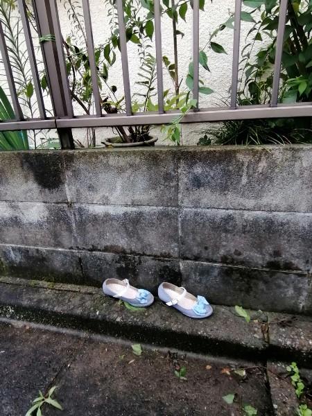 誰の?ずぶ濡れの可愛い靴