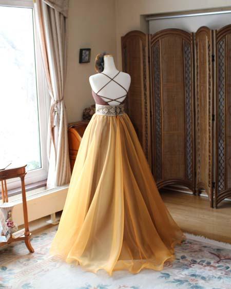 オーバースカートドレス バックスタイル