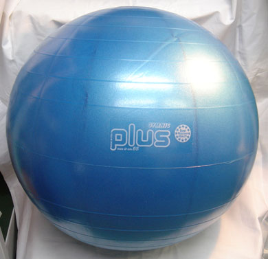 GYMNIC Plus Balls 65cm