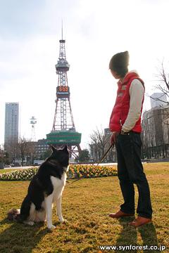 札幌「大通公園のテレビ塔」前にて