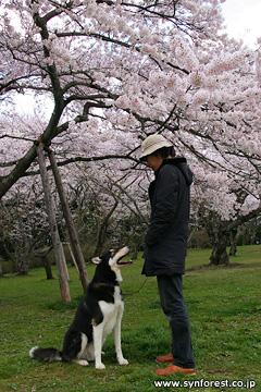 仙台オフショット1・三神峯公園