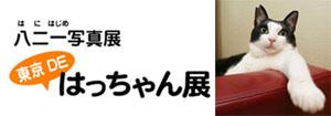 東京DEはっちゃん展