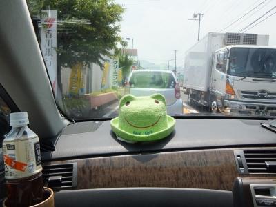 社内カエル帽子