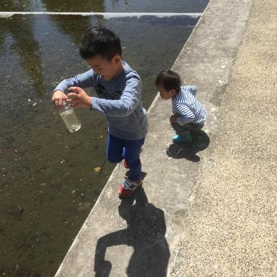 外の池にて
