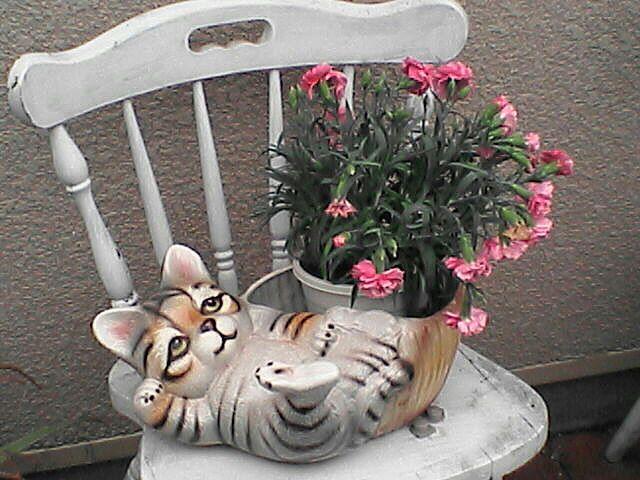 080615-03 猫の鉢