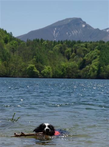 カヌー&水遊び。かなりはまりました♪