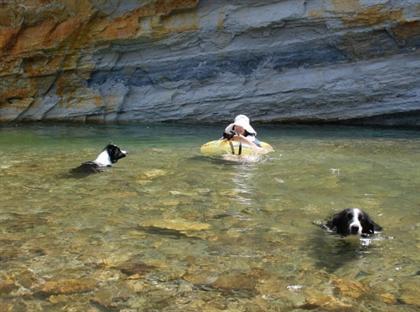 水面ギリギリで撮りたいのデス。