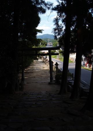 kamosu