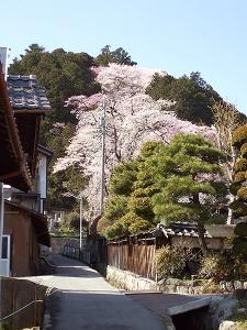 飯沼神社〜その1