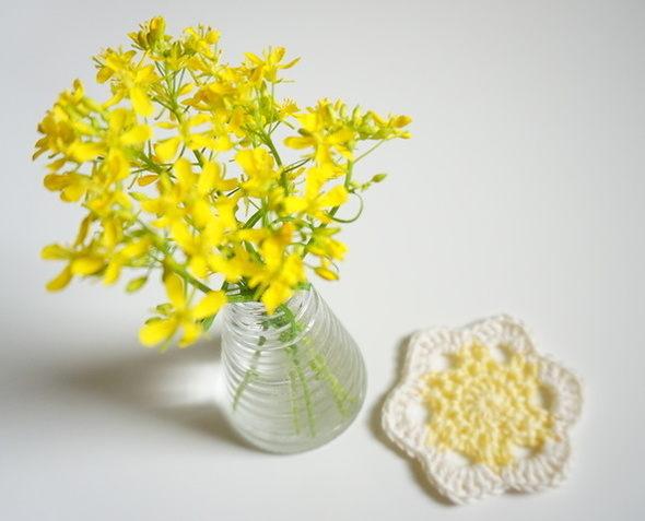 家庭菜園みずなの黄色い花