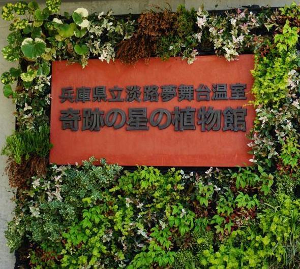 兵庫県立淡路夢舞台温室【奇跡の星の植物館】