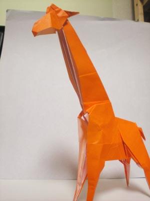簡単 折り紙 折り紙 キリン : origamiclub.jugem.jp