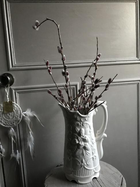 ネコヤナギ 花 切り花