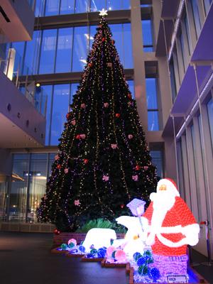 クリスマスツリー アオッサ