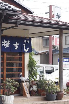 福井市 桜すし