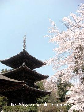 三井寺三十塔2009春01