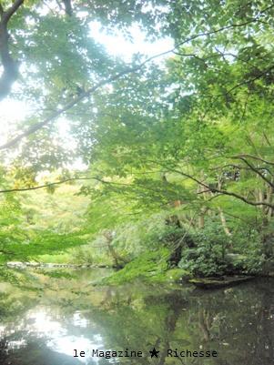 新根津美術館庭園2009-02