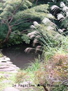 新根津美術館庭園2009-09