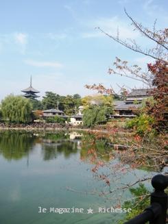 荒池より興福寺五重塔を望む