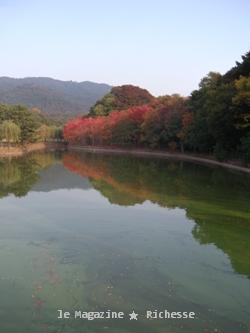 奈良公園荒池2009_01