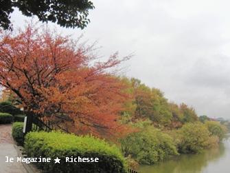 杁ヶ池2009秋02