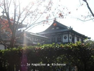 奈良2009秋
