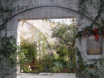 リストランテ プリマヴェーラ 庭