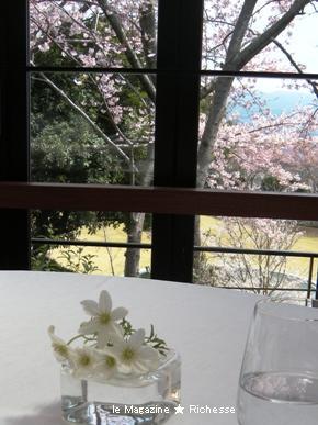 伊豆リストランテ・プリマヴェーラ  桜&クレマチス
