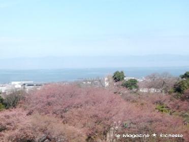 彦根城天守から望む琵琶湖
