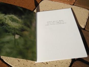 子どもと大人のやさいの本