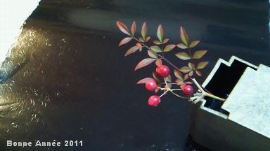 うつわ「刳りもの」by 新宮州三   漆のお敷 by HIGASHIYA GINZA