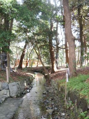 le10janvier2011_世界文化遺産_糺の森02