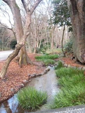 le10janvier2011_世界文化遺産_糺の森03