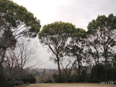le25fevrier2011_higashiyama