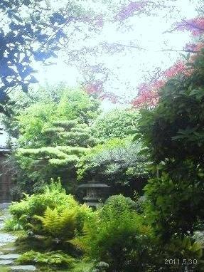 京都下鴨 「茶寮 宝泉」の庭