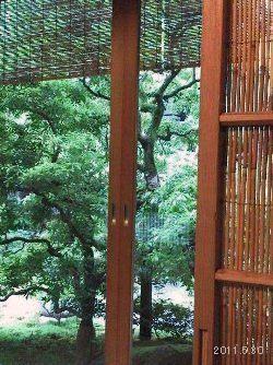 京都下鴨 「茶寮 宝泉」座敷席より望む