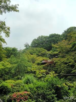 le5juin_南青山_根津美術館庭園