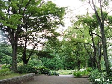 le23juin2011_千種区茶屋ヶ坂公園