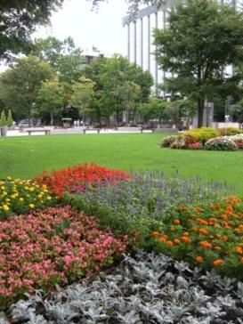 札幌大通公園花壇