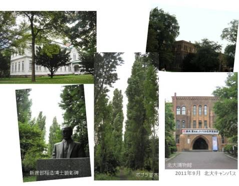 le5septembre2011_北海道大学キャンパス_新渡部稲造博士顕彰碑/ポプラ並木/総合博物館