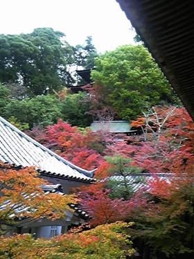 総本山永観堂禅林寺