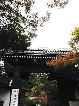 2011_京都 永観堂総門
