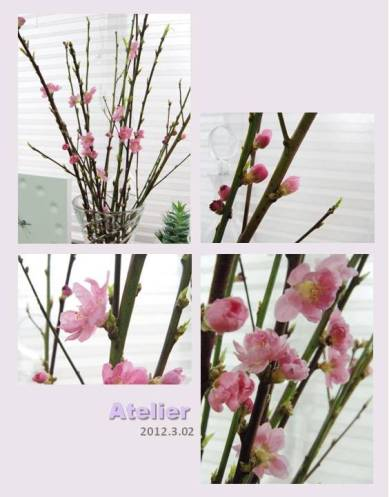 桃の節句〜Atelier_桃の花〜 01